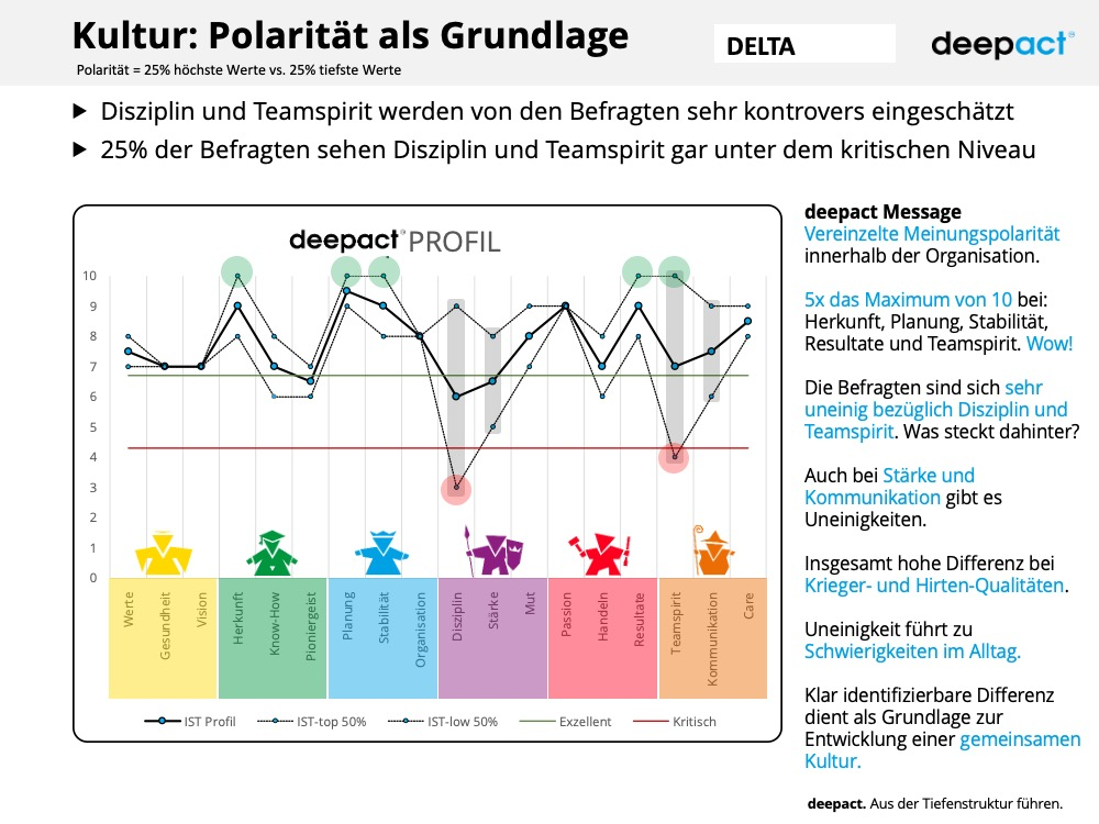 deepact Kultur Muster Report